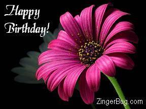 http://www.comments.zingerbugimages.com/HappyBirthday/pinkbirthdayflower.JPG
