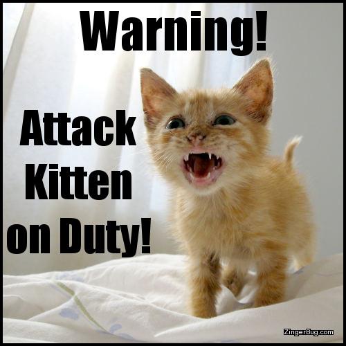 Attack Kitten Funny Meme Glitter Graphic, Greeting