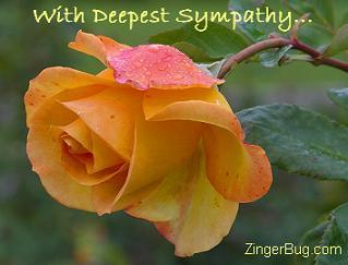 http://www.comments.zingerbugimages.com/glitter_graphics/sympathy_rose.JPG